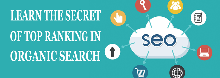 seo training in hyderabad